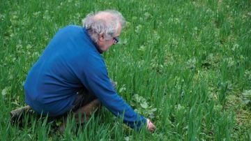 Patrice Brachet, éleveur de Dordogne, teste desassociations de fourragères
