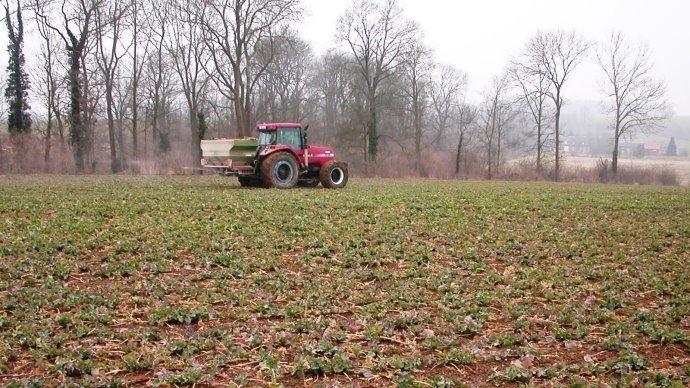 Fertilisation sur parcelle de colza