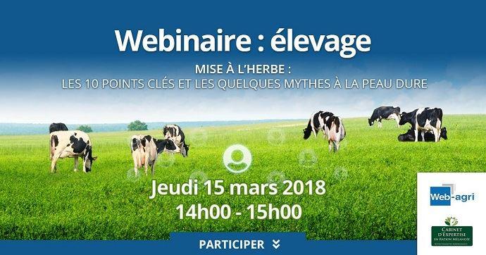 Webinaire élevage sur la mise à l'herbe organisé par Web-agri et le cabinet de nutritionniste BDM
