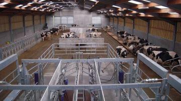 Observez votre troupeau sous un autre angle grâce au service Opti'view!