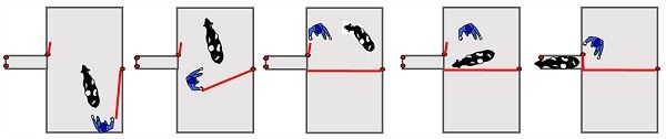 Le couloir en cul de sac permet d'isoler facilement la vache