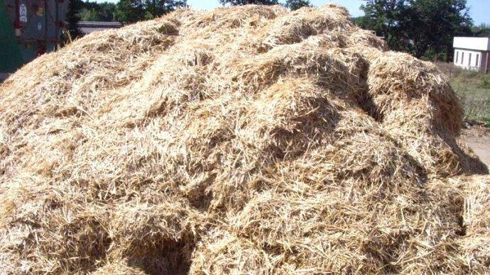 Le gros avantage du mash fibreux est qu'il peut être préparé en avance et être distribué à volonté, ce qui signifie moins de contrainte quotidienne pour l'éleveur.