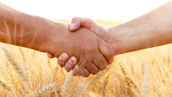 poignee de mains dans un champ de ble