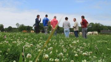 Visitez un élevage laitier biologique 100% herbe dans les Côtes d'Armor