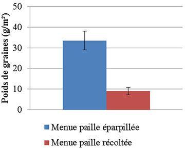Ray-grass tombés au sol (eng/m2) à la récolte du blé (2014) selon que les menues pailles sont exportées ou éparpillées