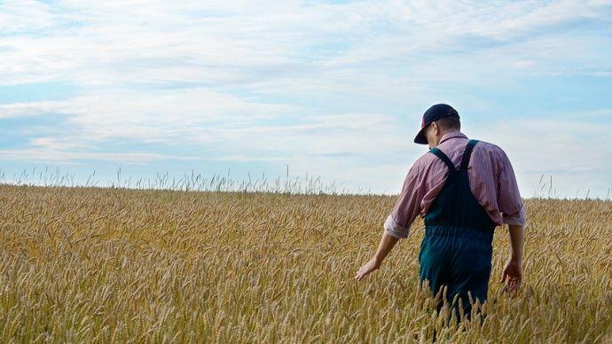 Agriculteur dans un champ