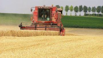 Plus de la moitié des éleveurs n'ont pas demandé d'aide pour la moisson
