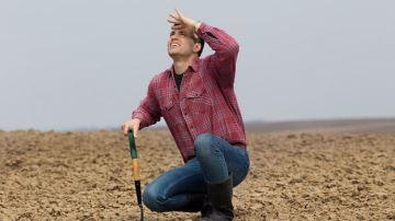 L'état des lieux des dégâts en agriculture