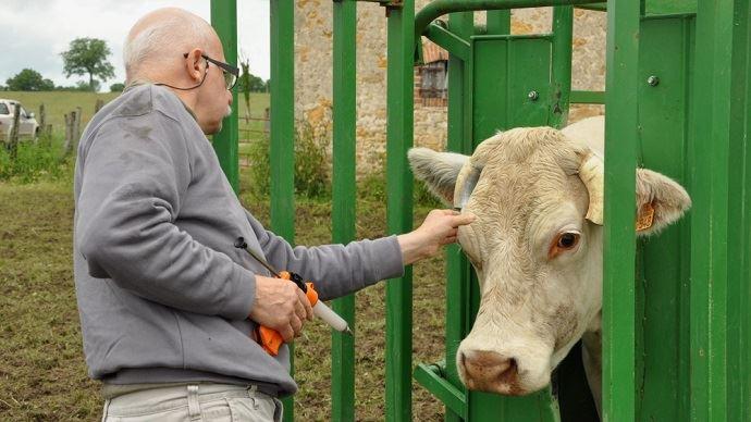 Les distributeurs de médicaments vétérinaires et leur organisme professionnel ont profité de l'épidémie de FCO qu'a connu la France entre 2007 et 2010 pour gonfler le montant de l'indémnisation des frais logisticques versée par l'État