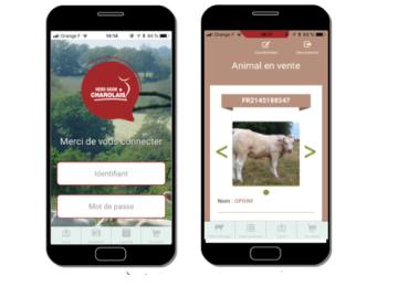 Le Herd Book lance une application smartphone pour ses adhérents