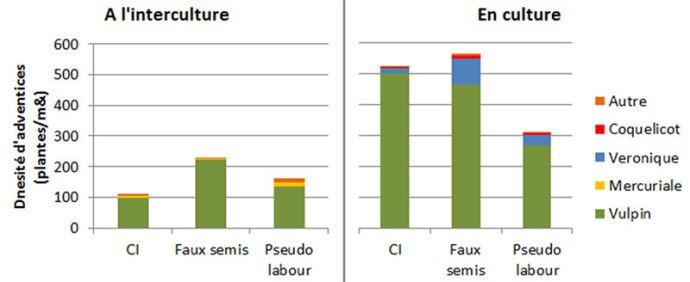 Densité d'adventices par espèces à l'interculture (à gauche) et dans la culture suivante (à droite) en fonction de la gestion de l'interculture (essai de St Geroges du bois (17) en 2016)