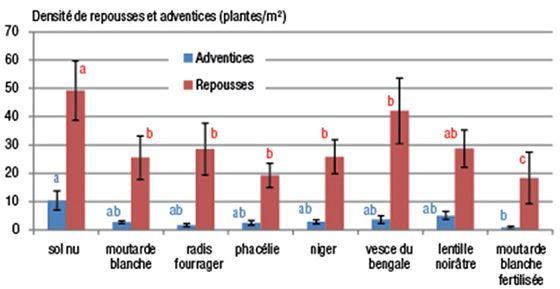 Densité des adventices et repousses (en plantes/m²) à l'interculture en fonction du type de couvert (suivis réalisés entre 2010 et 2012)