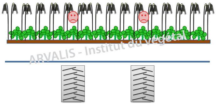 Configuration possible pour la récolte de la céréale (Coupe de 9m / Voie de la MB: 3m / Pneus de 900 mm)