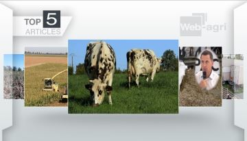 Abattoir mobile,sécheresse et nutrition des bovins à la Une