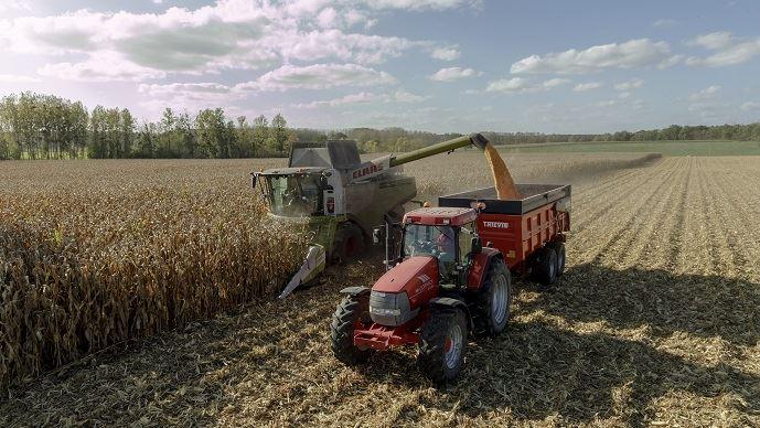 Récolte de maïs grain en France