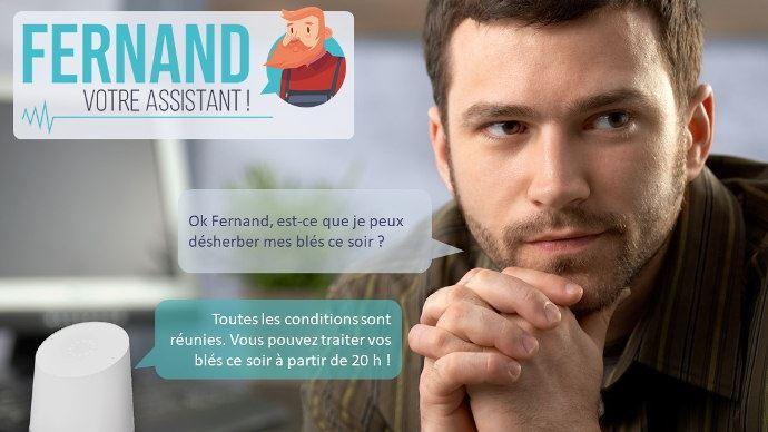 Posez directement vos questions à Fernand, il recherche ensuite vos réponses