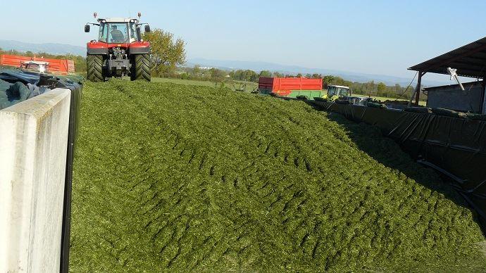 Pour présenter de très bonnes valeurs alimentaires, l'ensilage d'herbe doit être récolté au bon stade, par le bon équipement et être  bien conservé.