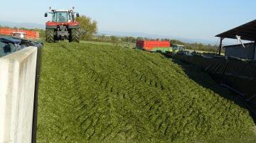 «Notre or vert c'est l'ensilage d'herbe»