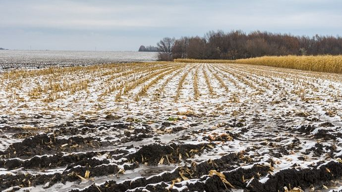 Coup de froid en mer Noire et neige au nord de la Corn Belt