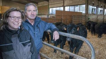 Le croisement Salers x Angus pour produire une viande finie en toute autonomie