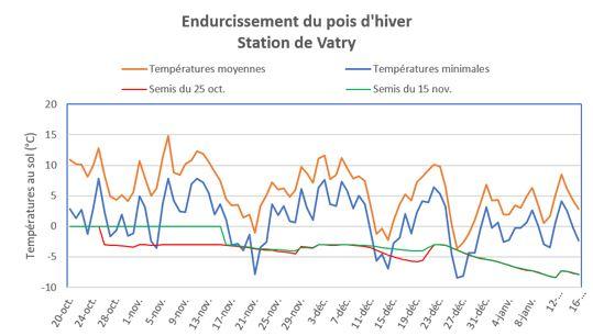 Endurcissement du pois d'hiver - Vatry