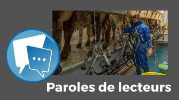 Charge de travail et main-d'½uvreen lait: les éleveurs à la peine