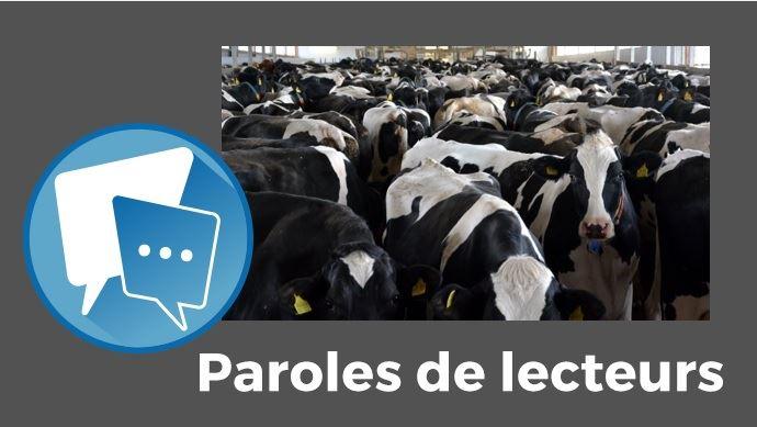 paroles de lecteurs combien de fermes de mille vaches pour nourrir les francais