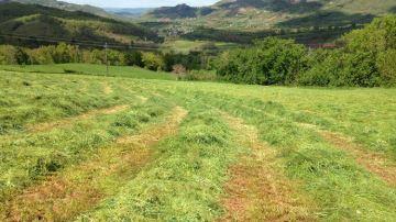 Les chantiers d'herbe se poursuivent avec unemétéo plus ou moins clémente