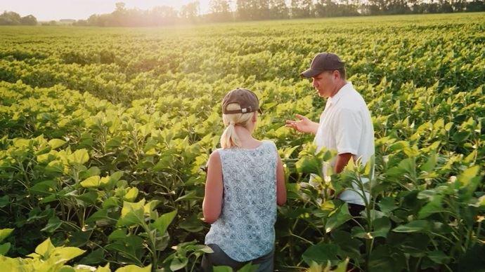 agriculteur et agricultrice dans un champ