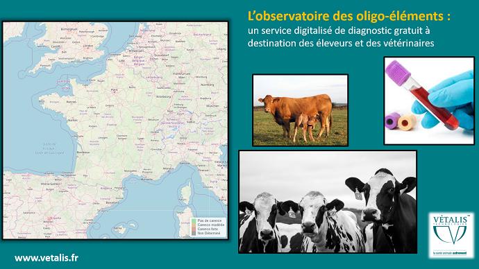 L'observatoire correspond à une géolocalisation des carences bovines en oligo-éléments.