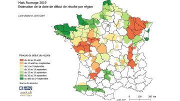 Des récoltes prévues au 25 août dans les régions les plus en avance