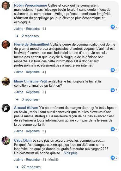 posts facebook premier velage genisses laitieres a 21 mois