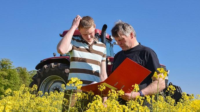 un jeune agriculteur avec un conseiller dans un champ de colza