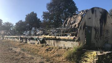 Le gouvernement condamne l'incendie d'un élevage hors sol dans l'Orne