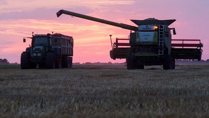 La France a enregistré, en 2019, sa deuxième plus grosse récolte de blé tendre, estimée à 39,5 Mt, contre 40,5 Mt, le record enregistré en 2015.