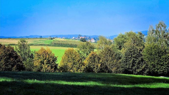 La Coordination rurale a présenté ses recommandations pour le pacte productif 2025 mardi 1er octobre 2019.