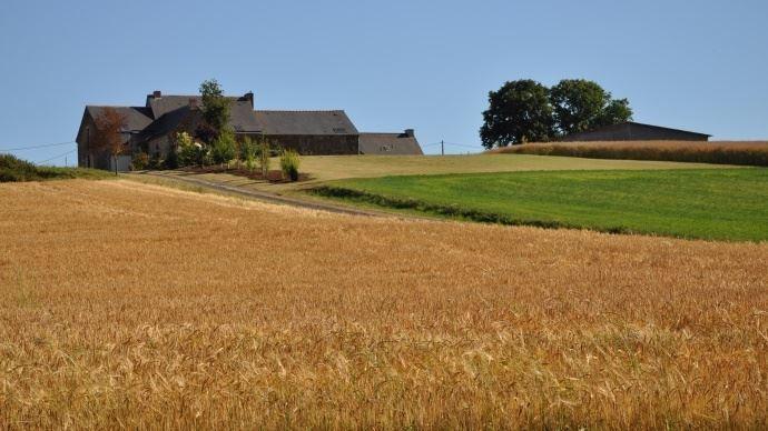 ferme au milieu des champs
