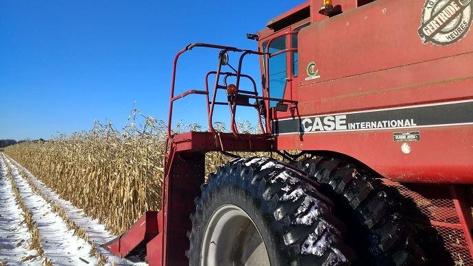 Dans le nord des Etats-Unis, tout comme ici au Québec, les céréaliers doivent terminer la récolte de maïs dans des conditions de froid intense et sous la neige.