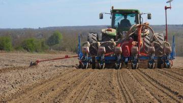Saatbau: des variétés autrichiennes adaptées aux aléas climatiques