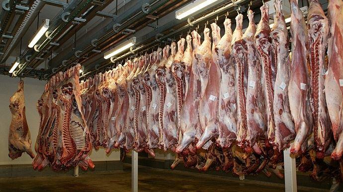 Selon la race, le type et l'âge des bovins abattus, le rendement d'abattage et de découpe pourra être très variable.