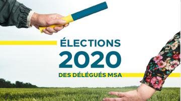 Pourquoi et comment voter pour les délégués MSA?
