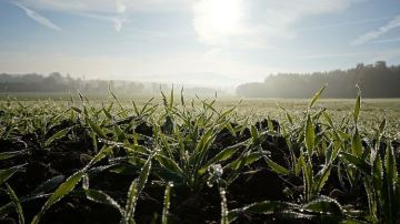 Quel temps pour la reprise des travaux en plaine et la mise à l'herbe?