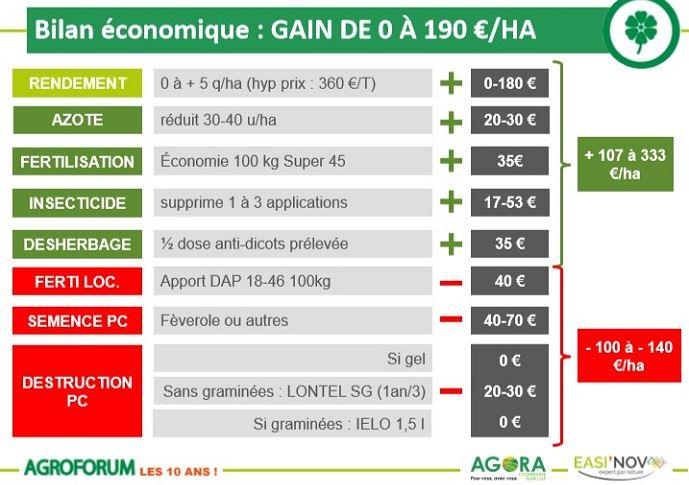 Bilan économiques des leviers agronomiques en colza