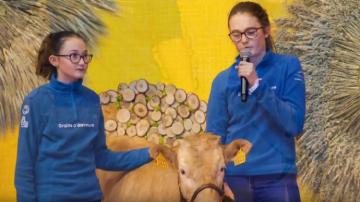 Des «graines d'éleveurs» de 6 à 18 ans mettront à l'honneur la vache villarde