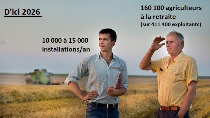 jeune et vieil agriculteurs dans un champ