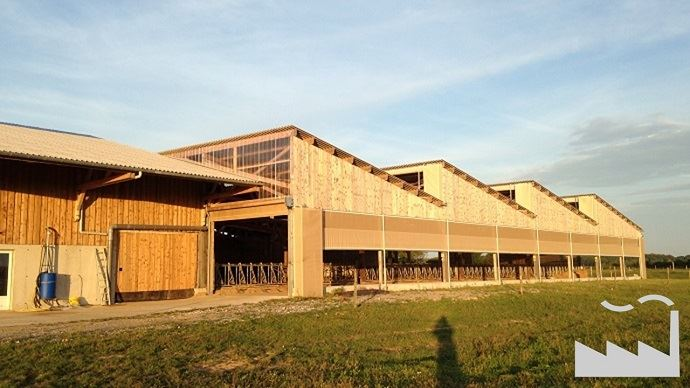 Stabulation vaches laitières avec toiture shed inspirée d'une usine