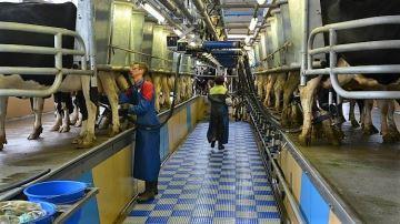 1000¤ de capital pour produire 1000l de lait