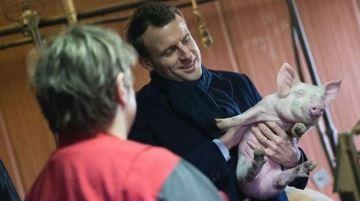 Emmanuel Macron se déplace en Bretagne pour soutenir la filière agricole