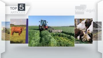 Au menu de la semaine: récolte d'herbe, accord UE-Mexique et les rations