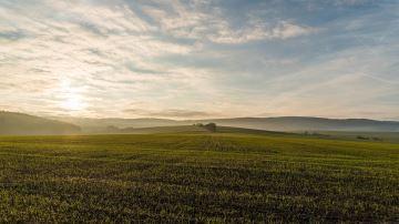 Les propositions de la FNSEA pour davantage de souveraineté alimentaire
